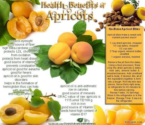Health Benefits of Apricots via www.bittopper.com...