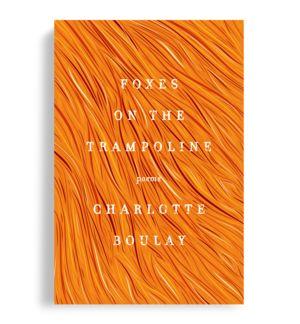 book cover design, Steve Attardo
