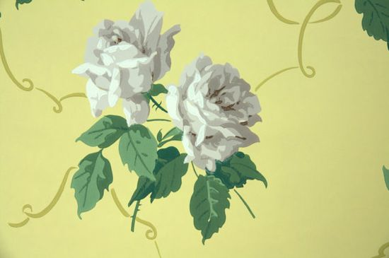 Floral Vintage Wallpaper White Roses on Yellow