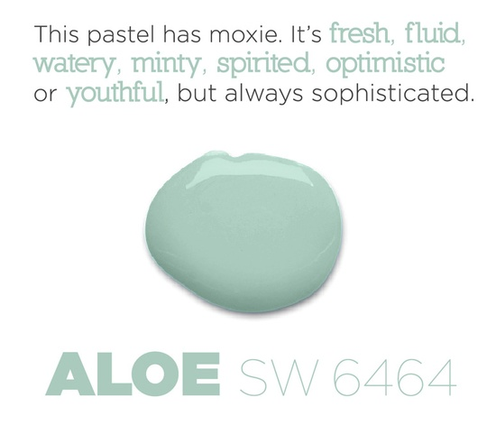 Here are some thoughts on why Aloe (SW 6464) rose to the top as Sherwin-Williams Color of the Year for 2013.