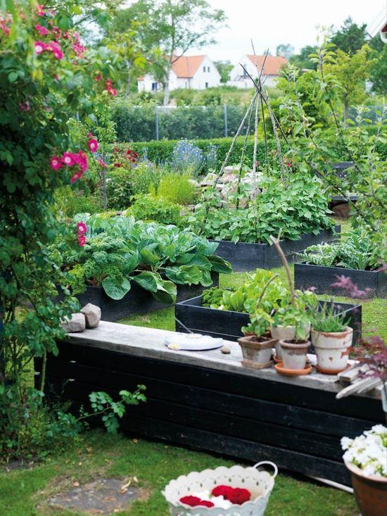 raised garden beds in black beds