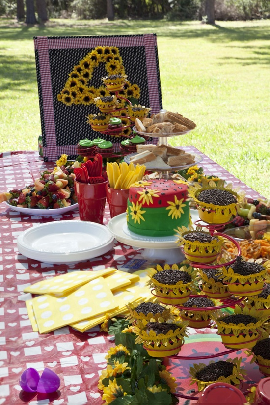 Picnic Birthday Party!