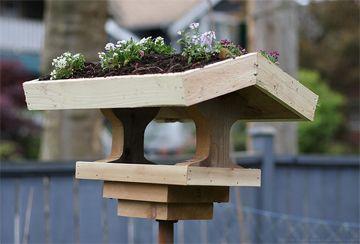 Green Roof Bird Feeder