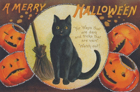 A silver sparkle adorned vintage postcard. #cute #Halloween #postcard #card #cat #pumpkins #vintage