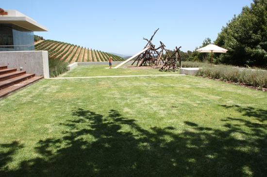 Grassy lawn for summer picnics