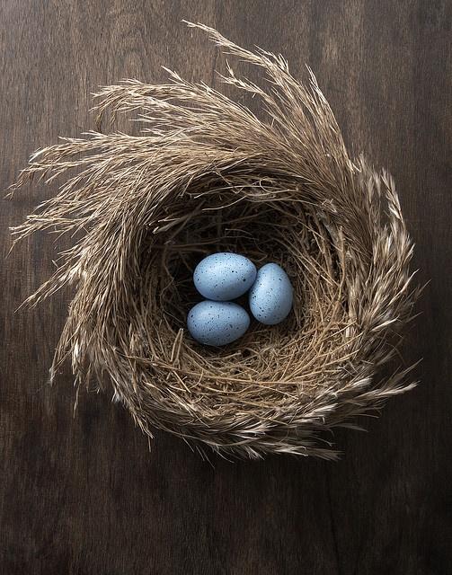 mini nest