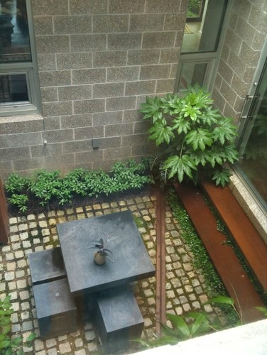 garden interior courtyard contemporary exterior