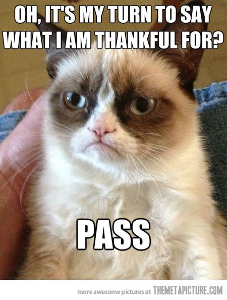 Grumpy cat has nothing to say…