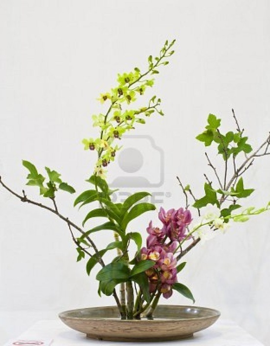 Image detail for -IKEBANA : japanese flower arrangement with Thai flower by Chiang Mai ...