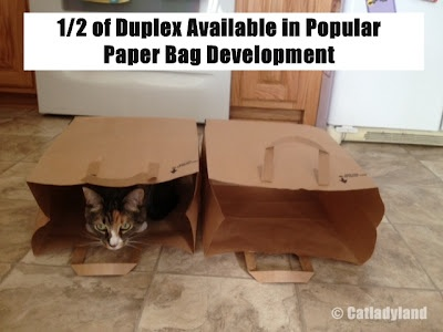 1/2 of duplex available in popular paper bag neighborhood.
