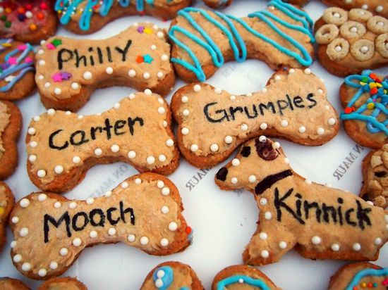 Dog treats for your puppy every month:) so cute!