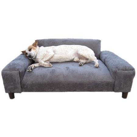 {Gustavo Pet Sofa} that dog looks soooo chill! also, sofa for the dog?!