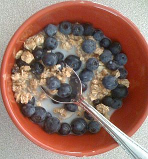 Granola and Blueberry Breakfast