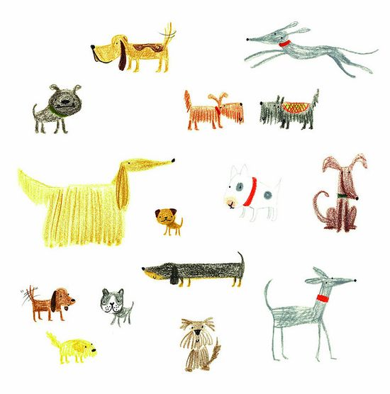dogs, illustration