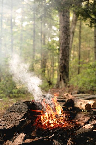 campfire#company picnic #summer picnic #prepare for picnic