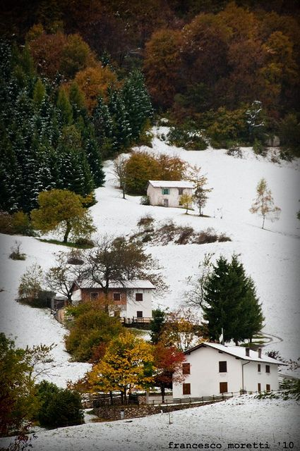 autumn + snow