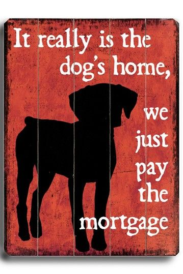 It Really is the Dogs Home...