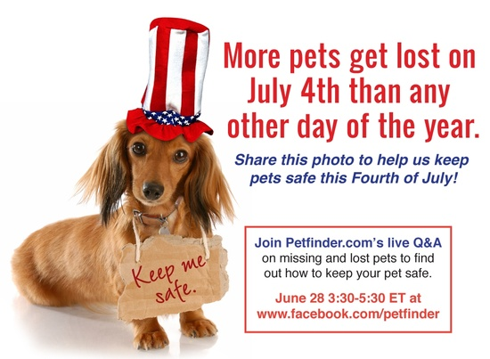 Help us keep pets safe this Fourth of July! Learn more about our Q here: