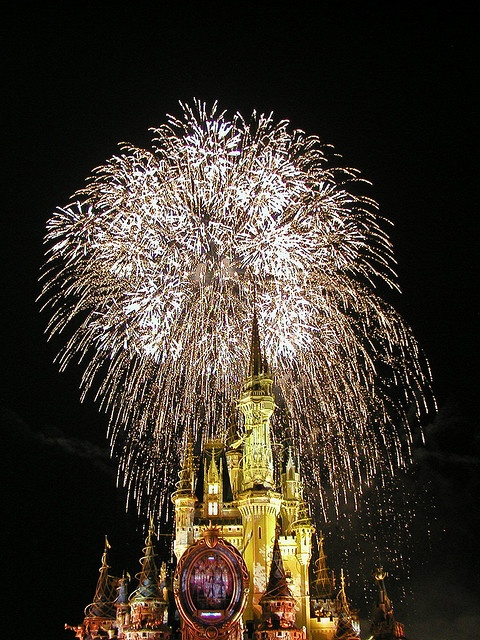 WDW - Magic Kingdom. Disney fireworks are some of the best, hands down. With the right settings and some forethought, you can get some amazing pics, even without a tripod.