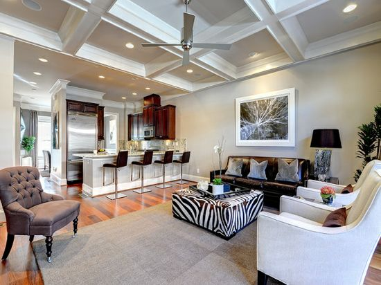 Sleek and High Style Living Room - Living Room Designs - Decorating Ideas - HGTV Rate My Space