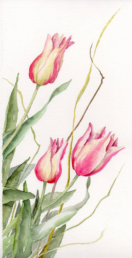 Floral Art Watercolor painting Original Tulips Flower Art Spring Celebrations Pink Tulips via Etsy