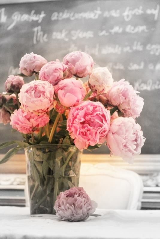 Pink peonies. Just so pretty!