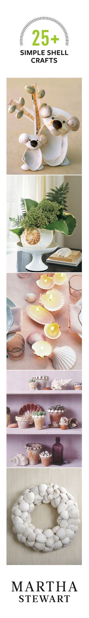 25+ Simple Crafts You Can Make With Shells