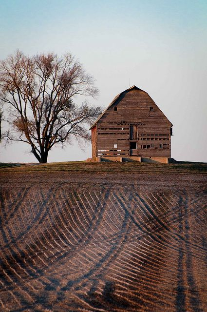 Old Barn and Corduroy Fields