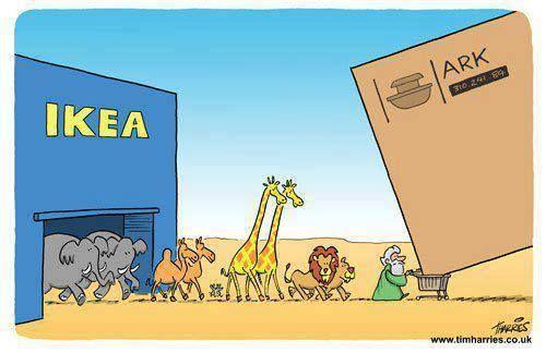 Love this Noah Cartoon