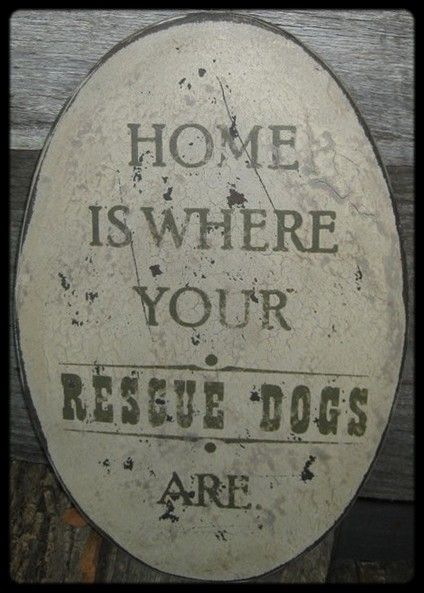 Home is where your rescued dogs are.....