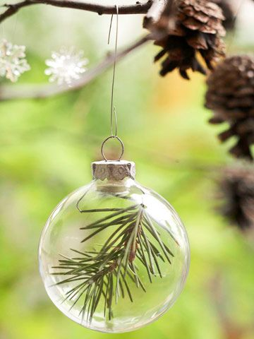 This small spray of pine, inserted into a clear ornament, makes for a nature-inspired tree accessory.