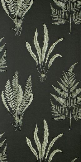 Woodland Ferns wallpaper