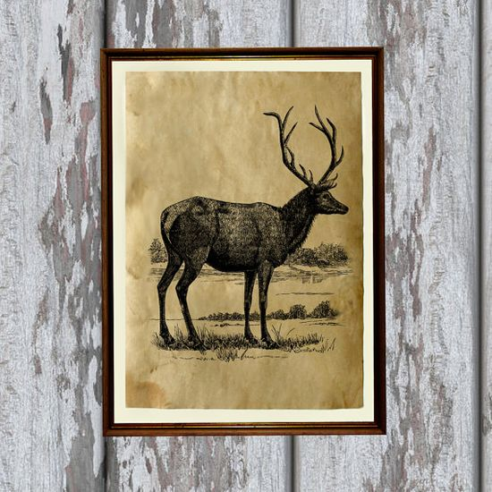 Vintage paper Deer decoration Wild animal print by artkurka, $18.00