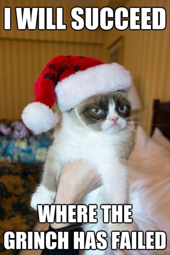 Grumpy cat and the grinch are twins.