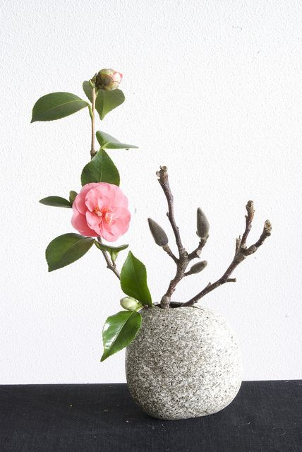 Ikebana with Camellia Japonica and Magnolia