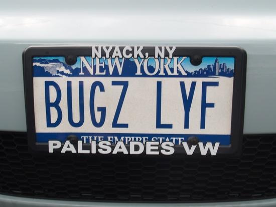 500 bugzlyf ideas in 2020 vw bug vw beetles volkswagen vw bug vw beetles volkswagen