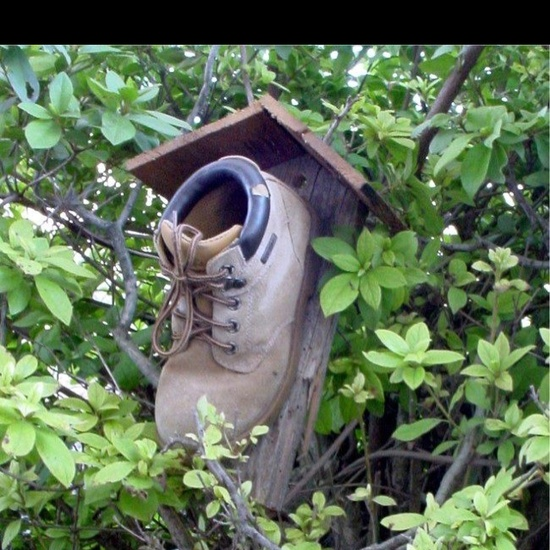 Bird house using Recycled materials.