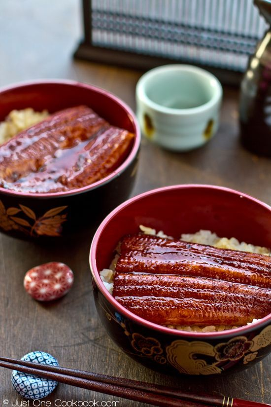 Japanese food - Unagi Don - :eel rice ball