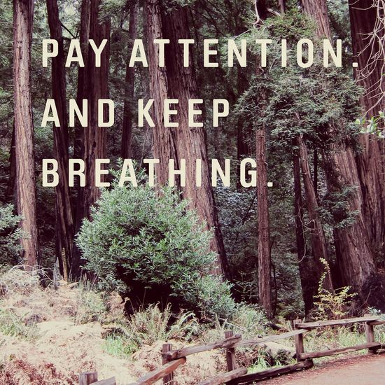 pay attention and keep breathing