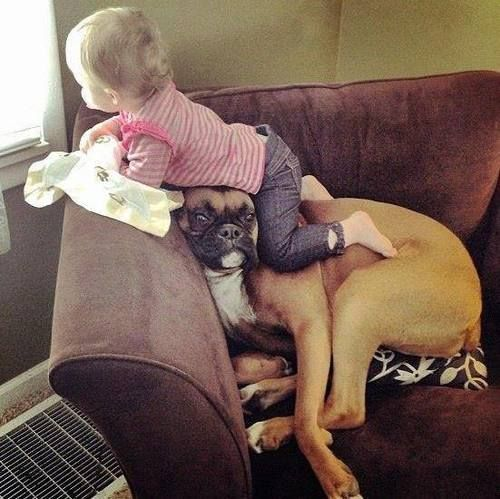 Baby + dog = partners in crime