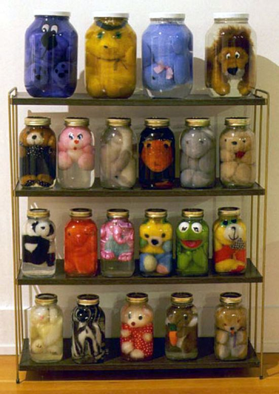 "Canadian artist Ian Baxter's ""Animal Preserve"" series from 1999 featured hundreds of stuffed animals ""preserved"" in liquid-filled jars neatly organized on shelves."