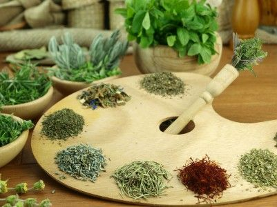 Four Herbs Commonly Used In Cooking