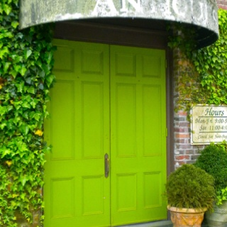 Beautiful green doors