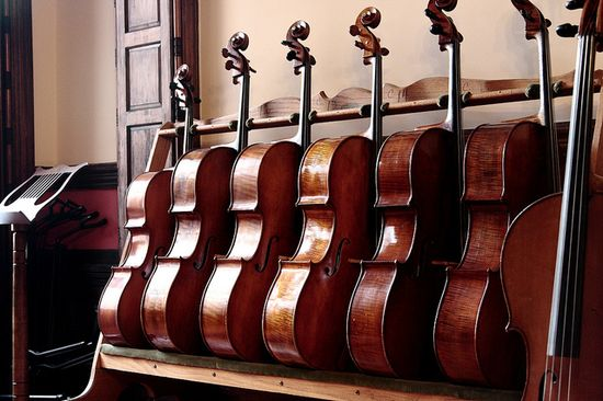 Meet the Cello Family