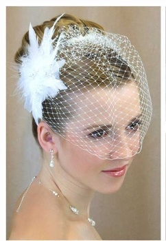 Birdcage Wedding Veil With Crystal Feather Fascinator Clip- On Sale! $59.99 including U.S. shipping! affordableeleganc...