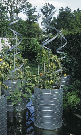 very cool tomato planters, made from old olive oil drums – I am going to try tin