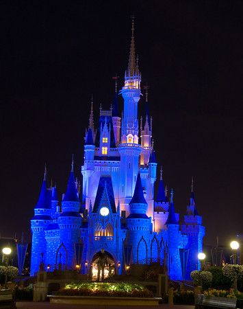 5 Indispensable Tips for Great Vacation Photos - Disney Tourist Blog