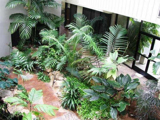 My beautiful garden decors amazing indoor garden designs for Amazing garden designs