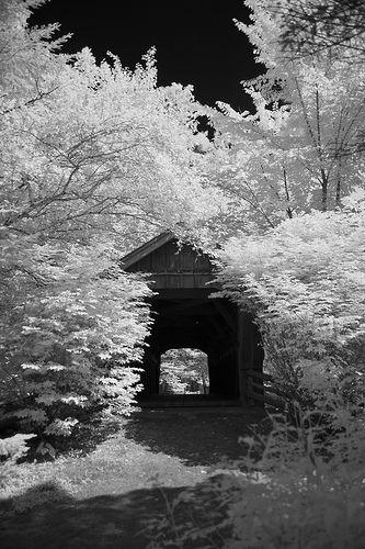 Winter Wonderland Covered Bridge