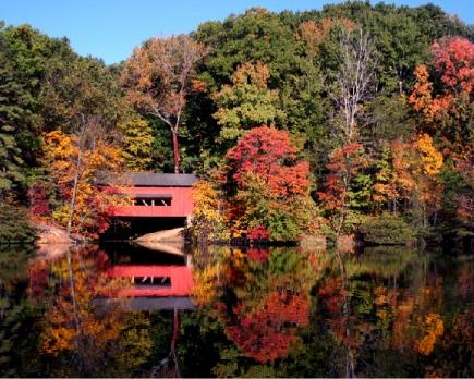 Our readers celebrate the season with gorgeous photos of autumn forests and fall bounty.